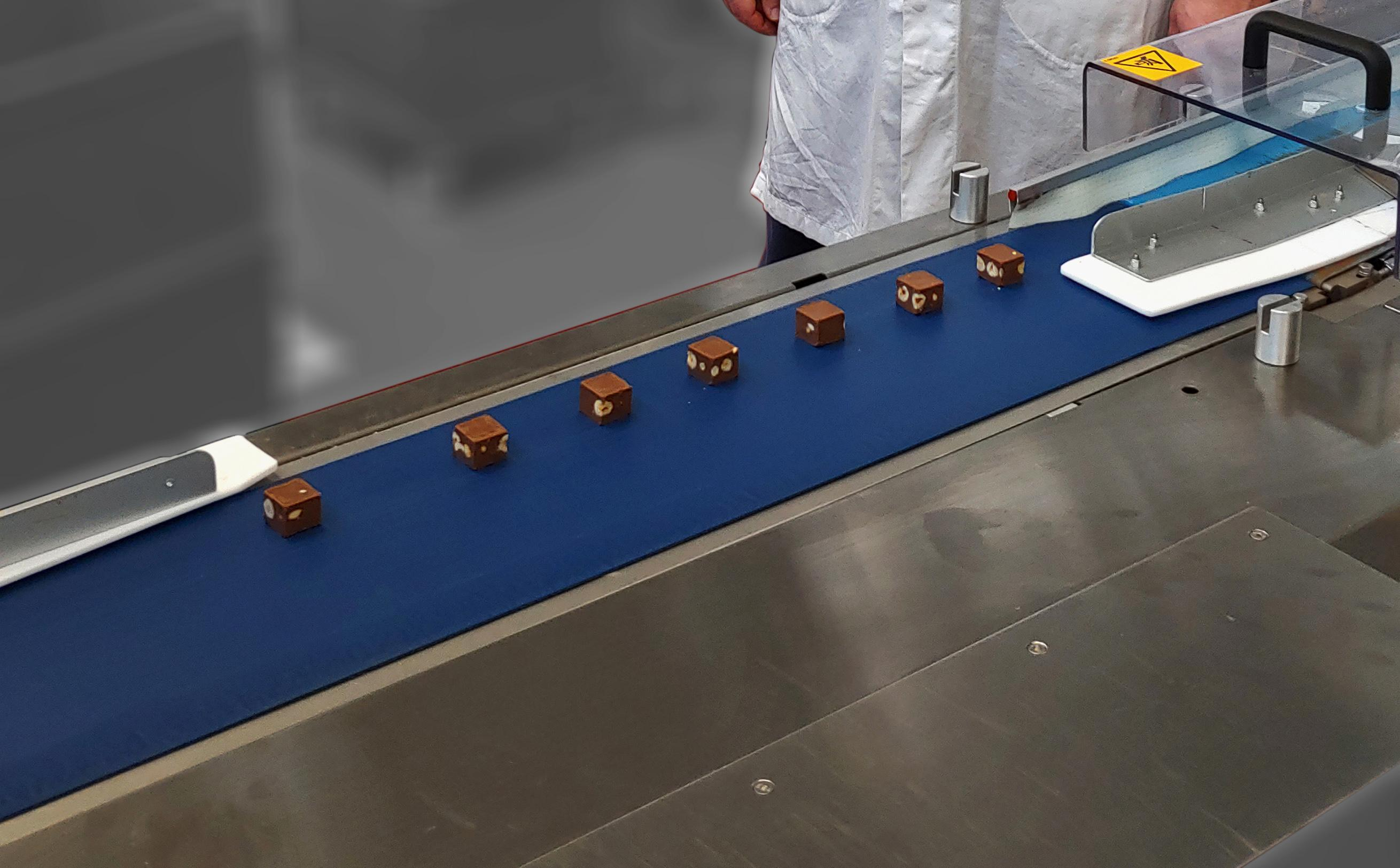The new Dectyl metal-detectable belt range for improved Food Safety!