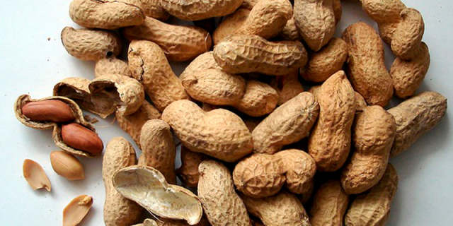 Peanuts for peanut butter cookies