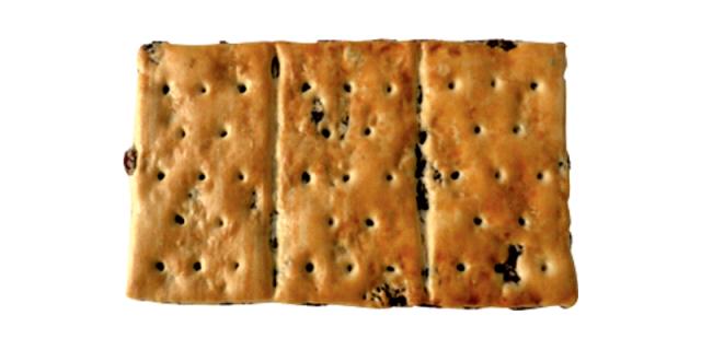 Garibaldi biscuits