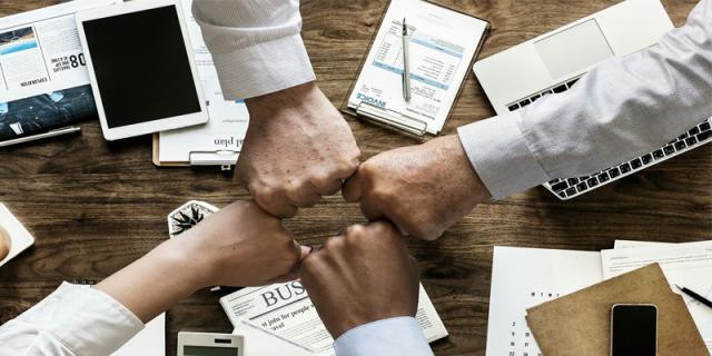 starting a business team