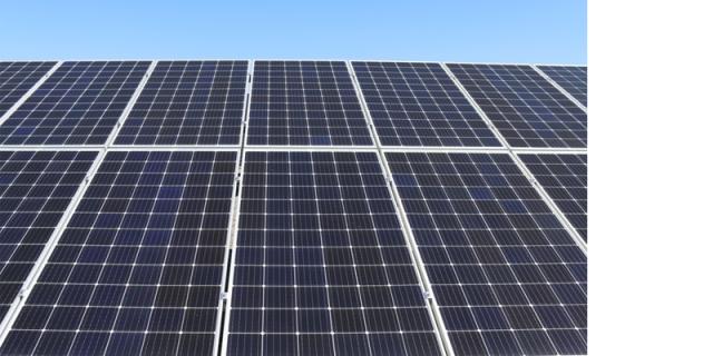 Solar Panels in Biscuit Industry