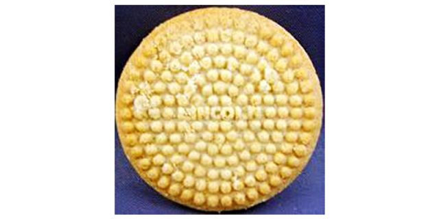 Lincoln biscuits