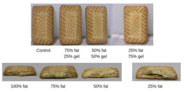 Fats in biscuits