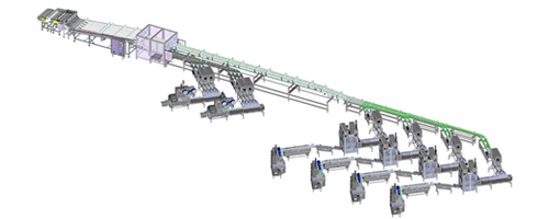 Equipment Complete flow packaging system for biscuits and crackers in stack portions and on edge inside trays produced by IMA FLX HUB