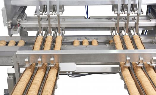 Equipment Measuring Feeder for on-edge Wrapping/Packing produced by EverSmart