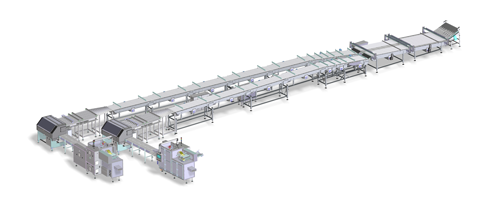 Equipment Fully automated handling and packaging line for biscuits on edge X-Fold style produced by IMA FLX HUB