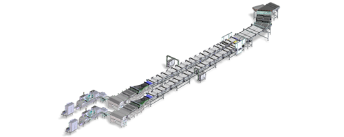 Equipment Fully automated line for handling and packaging biscuits on edge in flow pack style produced by IMA FLX HUB
