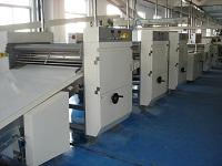 DSM Dingson Food Machinery forming line