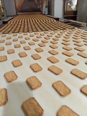 Haim Papushado and Biscuit manufacturer